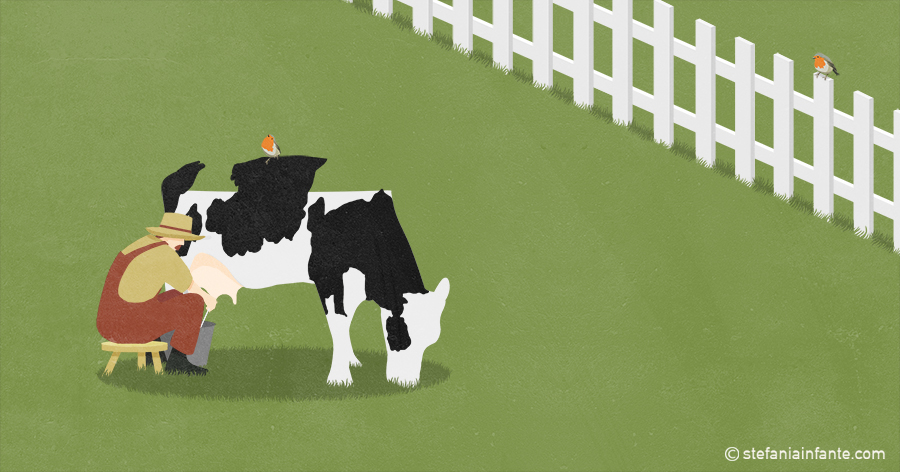 Milking a cow stefania infante